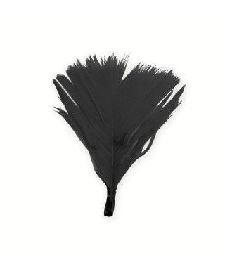 Plumón cortado Negro