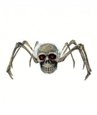 Cráneo con patas Novia