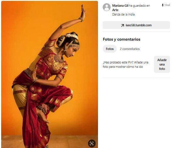 inspiracion disfraz indio