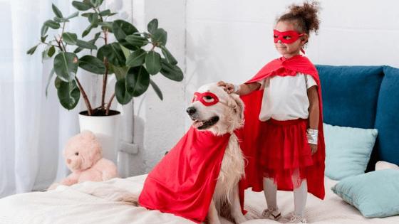 Disfraces para perros gatos mascotas
