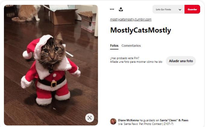 disfraces de navidad para perros y gatos papa noel