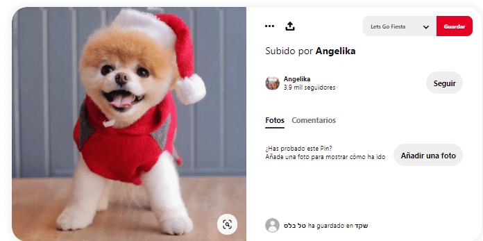 disfraces de navidad para perros