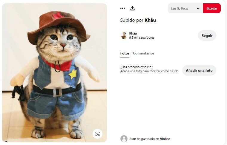 disfraces para perros y gatos sheriff vaquero