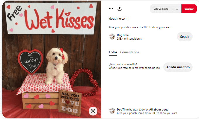 disfraces para mascotas san valentin perros besos