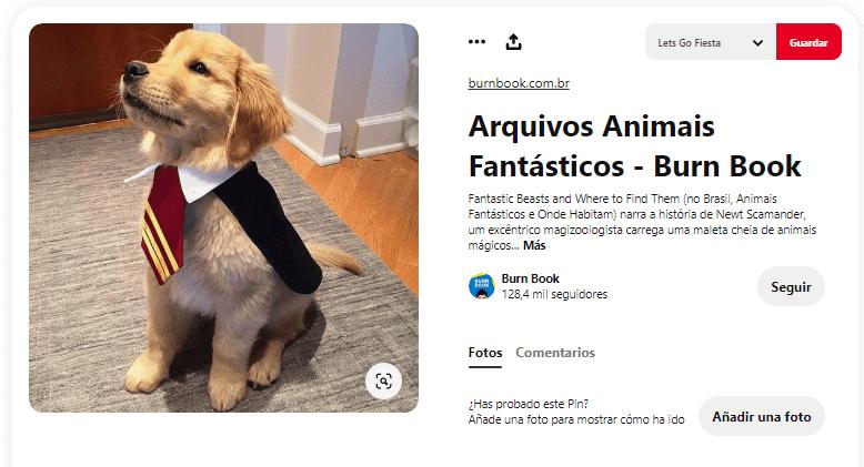 disfraces para perros harry potter