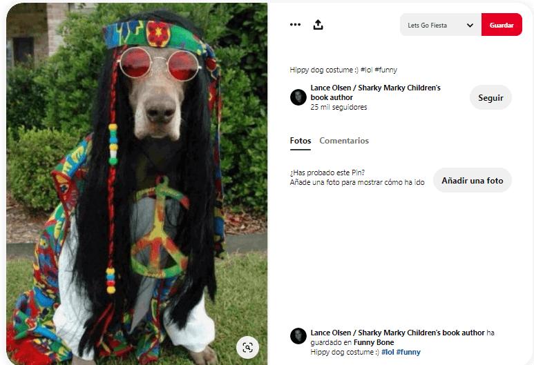 disfraces para perros hippie