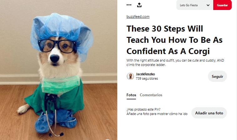 disfraces para perros enfermero