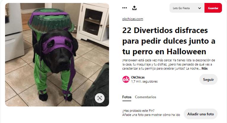 disfraces para mascotas perros tortuga ninja