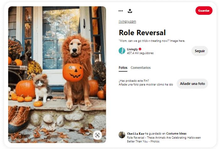 origen Halloween truco o trato pedir caramelos con mascotas